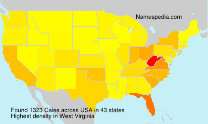 Familiennamen Cales - USA