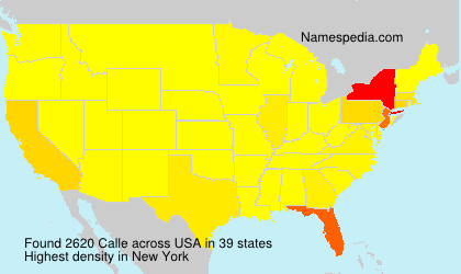 Surname Calle in USA