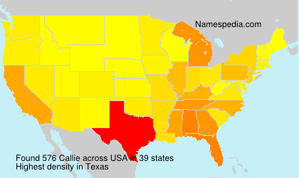 Surname Callie in USA