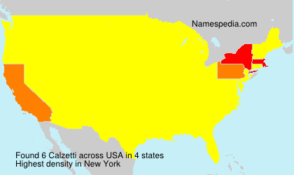 Surname Calzetti in USA