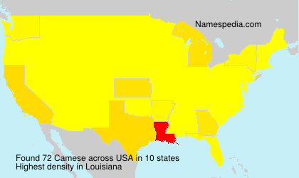 Surname Camese in USA