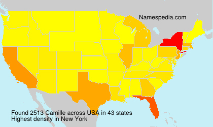 Surname Camille in USA