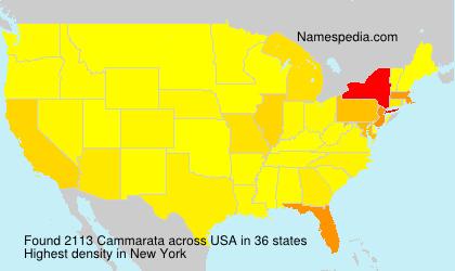 Surname Cammarata in USA