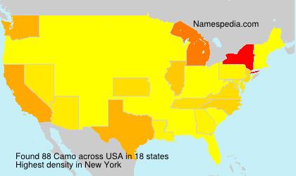 Camo - USA