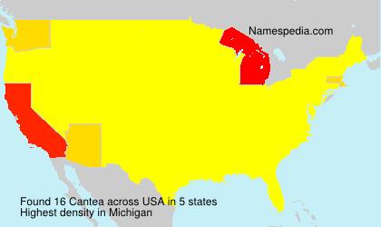 Surname Cantea in USA