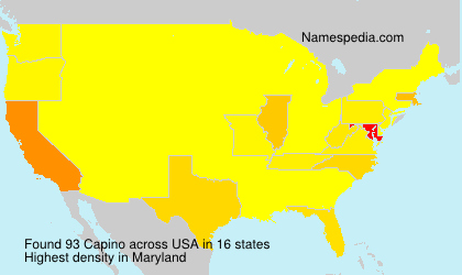 Surname Capino in USA