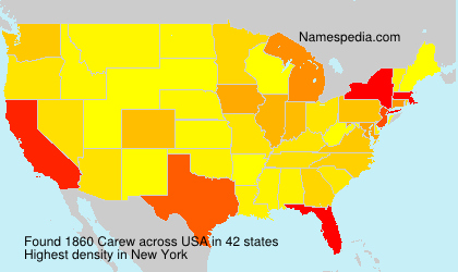 Surname Carew in USA
