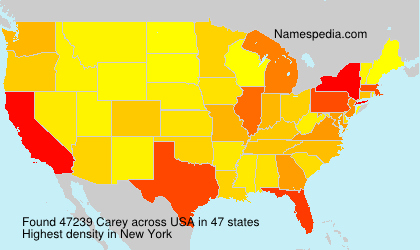 Surname Carey in USA