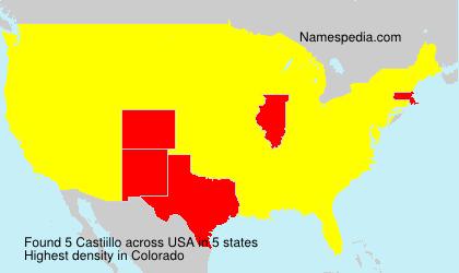 Surname Castiillo in USA