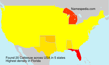 Surname Catteeuw in USA
