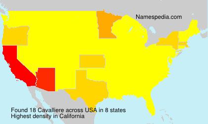 Cavalliere - USA