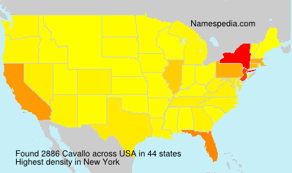 Surname Cavallo in USA