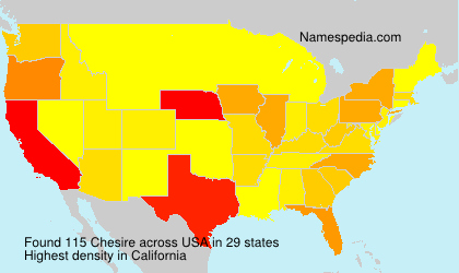 Surname Chesire in USA