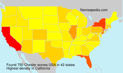Surname Chesler in USA