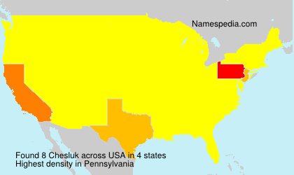 Surname Chesluk in USA
