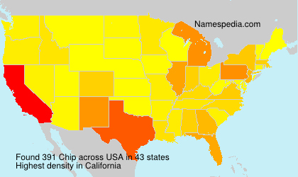 Surname Chip in USA