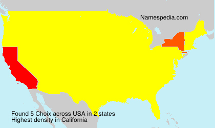 Familiennamen Choix - USA
