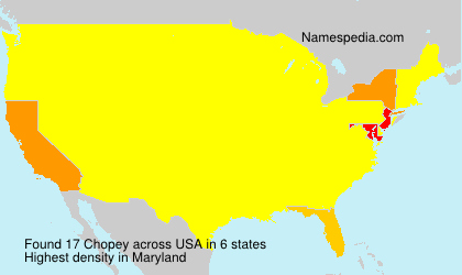 Surname Chopey in USA