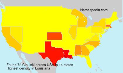 Surname Cibulski in USA