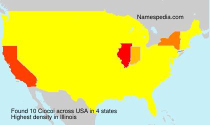 Ciocoi - USA