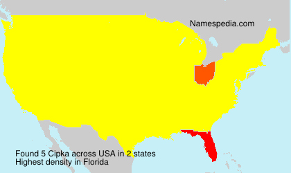 Surname Cipka in USA