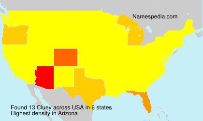Cluey - USA