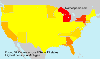 Curlew - USA