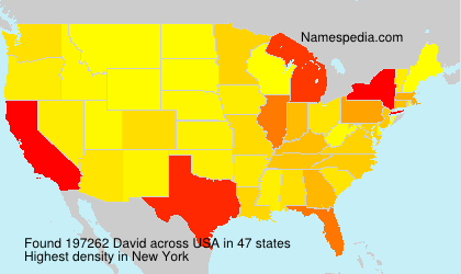 Surname David in USA