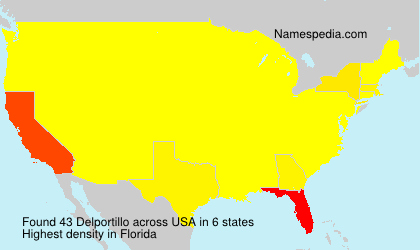 Surname Delportillo in USA