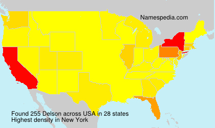 Surname Delson in USA