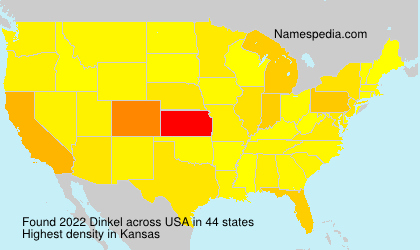 Surname Dinkel in USA