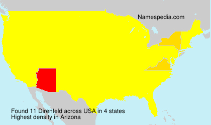 Surname Direnfeld in USA