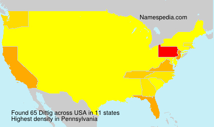 Surname Dittig in USA