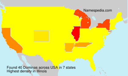 Surname Dominas in USA