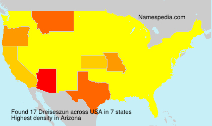 Familiennamen Dreiseszun - USA