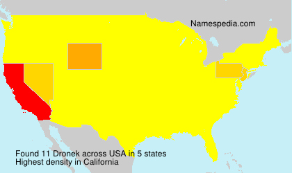 Surname Dronek in USA