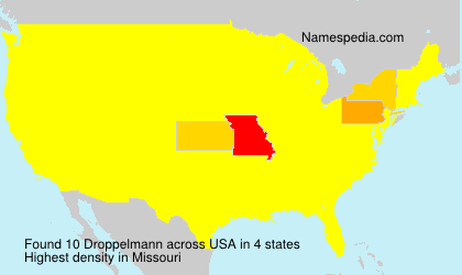 Surname Droppelmann in USA