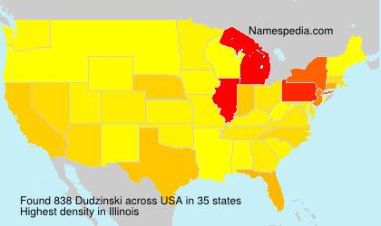 Surname Dudzinski in USA