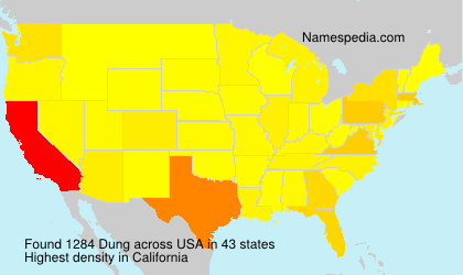Surname Dung in USA