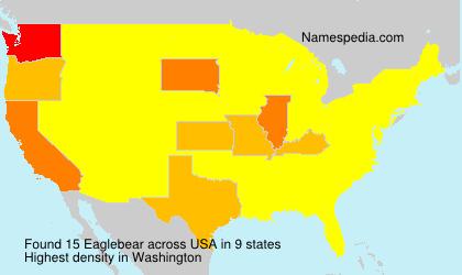Eaglebear - USA