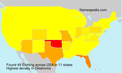 Surname Eichling in USA