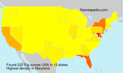 Surname Eig in USA