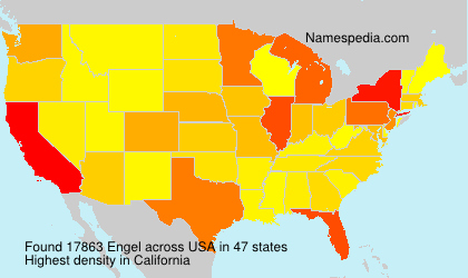 Surname Engel in USA