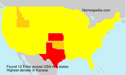Surname Erkie in USA