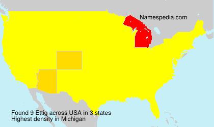 Surname Ettig in USA