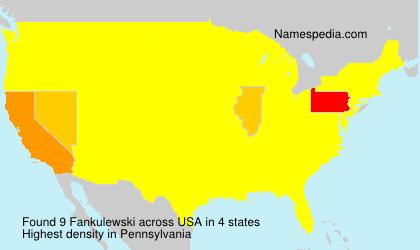 Fankulewski - USA