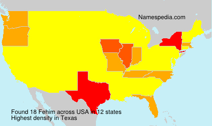 Surname Fehim in USA