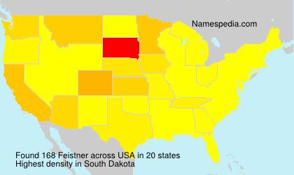 Familiennamen Feistner - USA