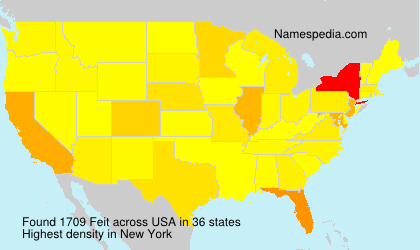 Surname Feit in USA