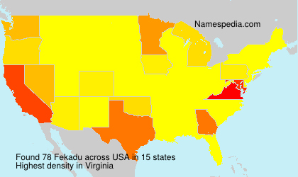 Surname Fekadu in USA